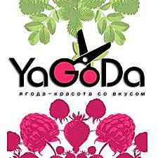 Yagoda Cтудия Kрасоты