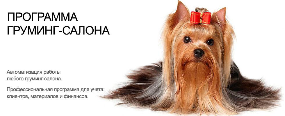 Работа с груминг. Учет клиентов груминг салона для животных, система салона для собак. Программа ведения учета груминг салона