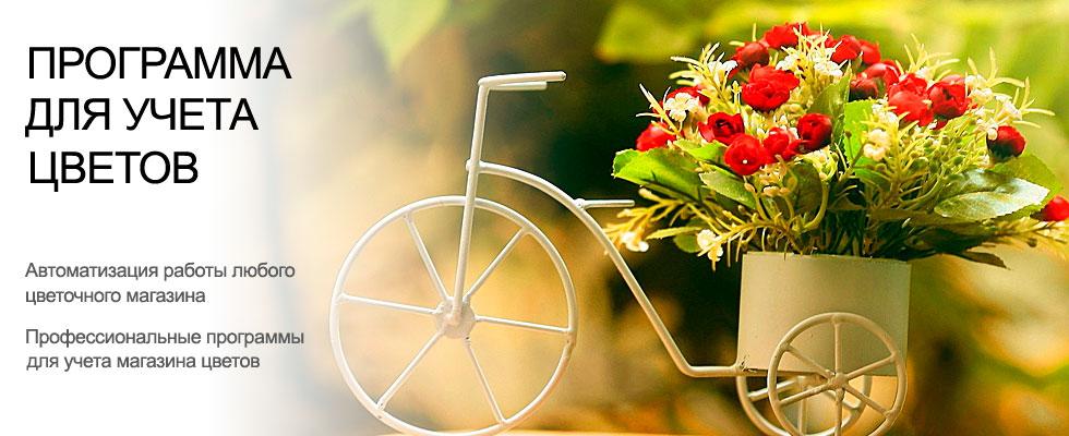 Работа, ведение и организация бизнеса. Программа управления, автоматизация учета цветов и цветочного магазина. Контроль, учет клиентов, управление цветочным магазином